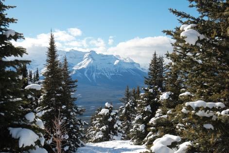 Views from Lake Louise Ski Resort